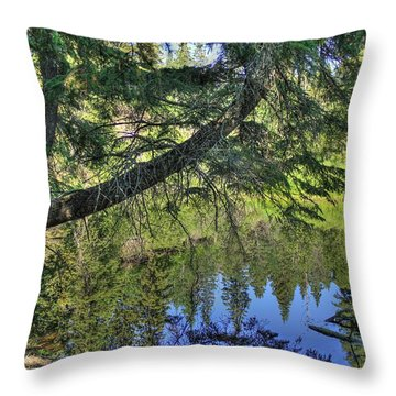 Throw Pillow featuring the photograph Summer Pond by Jim Sauchyn
