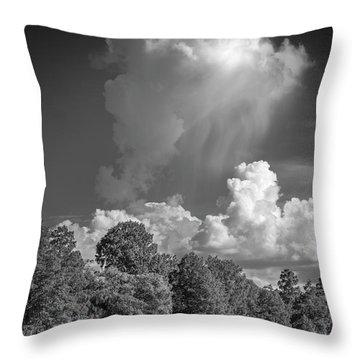 Summer Pop Up Throw Pillow