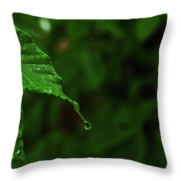 Summer Rain Throw Pillow