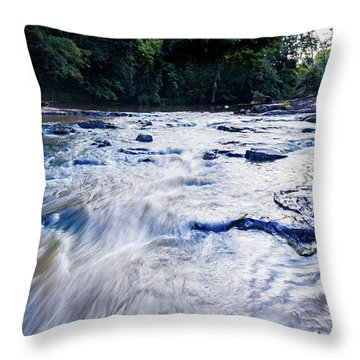Summer River Throw Pillow