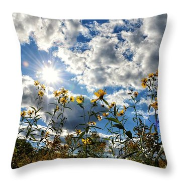 Summer Scene Throw Pillow