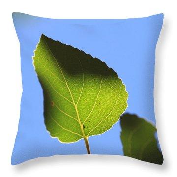 Summer Sky Aspen Throw Pillow