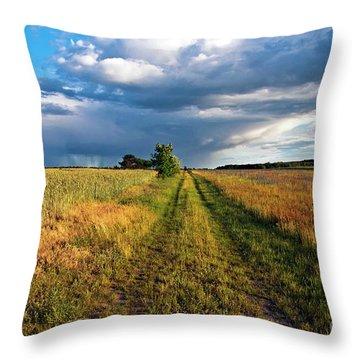 Summer Sound Throw Pillow