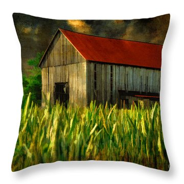 Summer Storm Throw Pillow by Lois Bryan