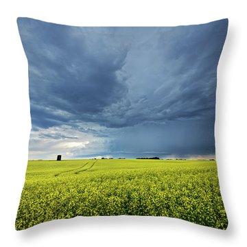 Summer Storm Over Alberta Throw Pillow