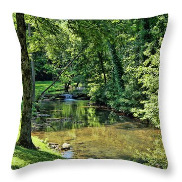 Throw Pillow featuring the photograph Summer Stream by Cricket Hackmann