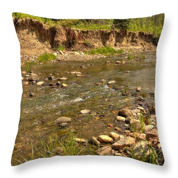 Throw Pillow featuring the photograph Summer Stream by Jim Sauchyn