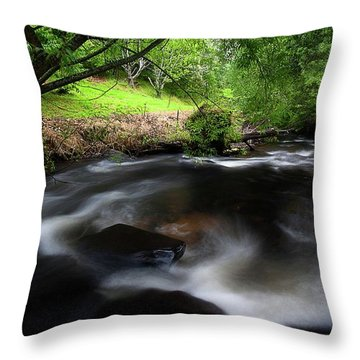 Summer Stream Throw Pillow