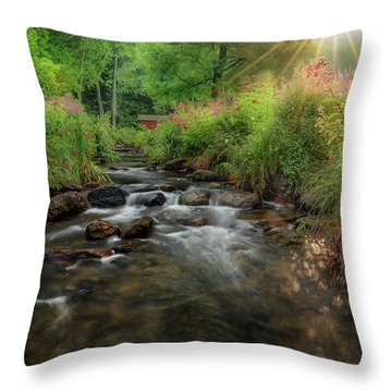 Throw Pillow featuring the photograph Summer Sun 2018 by Bill Wakeley