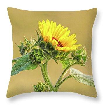 Throw Pillow featuring the photograph Summer Sunflower Floral by Jennie Marie Schell