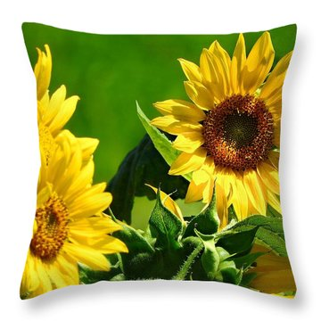 Throw Pillow featuring the photograph Summer Suns by Laura Ragland