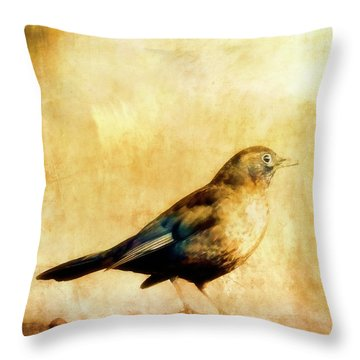 Summer Thrush Throw Pillow