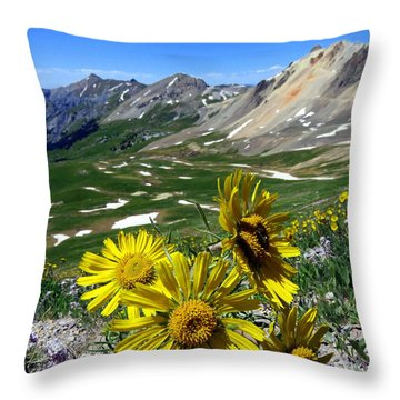 Summer Tundra Throw Pillow