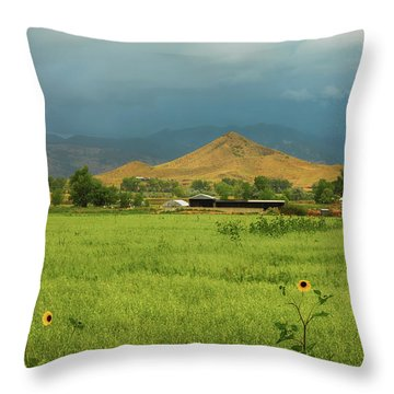Throw Pillow featuring the photograph Summer View Of  Hay Stack Mountain by James BO Insogna