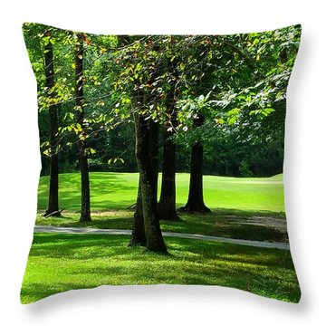 Throw Pillow featuring the photograph Summer Walk by Geraldine DeBoer