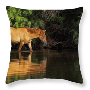 Summer Reflected Throw Pillow by Sue Cullumber