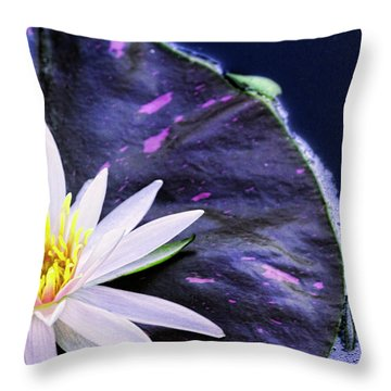 Summer Water Lily Throw Pillow