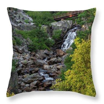 Summer Waterfall Throw Pillow