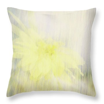 Throw Pillow featuring the photograph Summer Whisper by Ann Powell