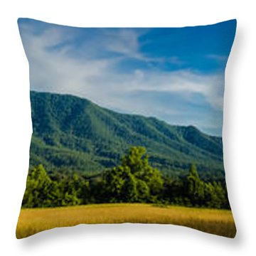 Summer With Cade Throw Pillow