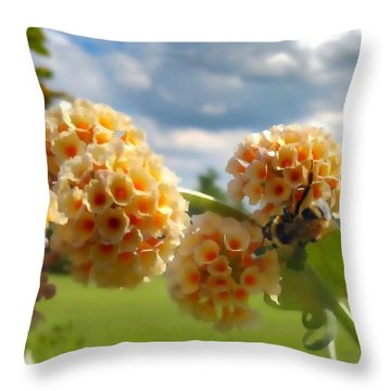 Throw Pillow featuring the photograph Summer Work by Isabella F Abbie Shores FRSA