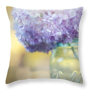 Summer's End Throw Pillow by Amy Tyler