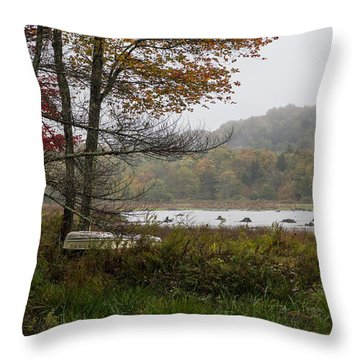 Summers End Throw Pillow