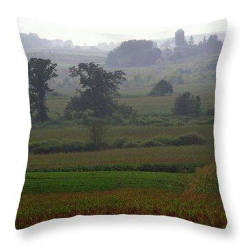 Summer's Eve Throw Pillow