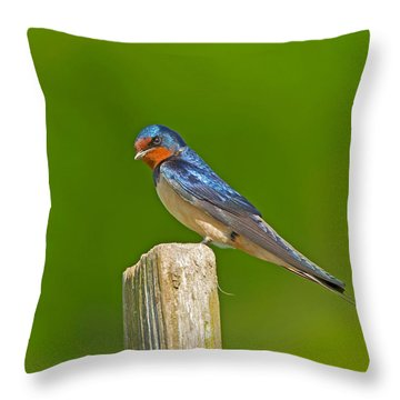 Summers Here. Throw Pillow