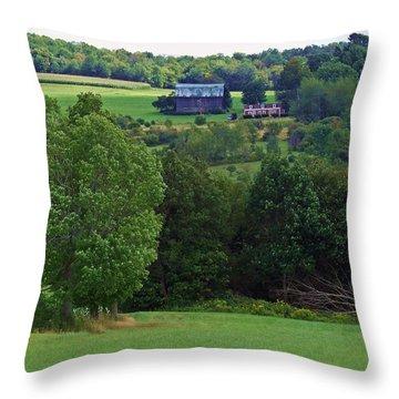 Summer's Last Hurrah Throw Pillow