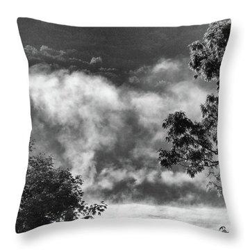 Summer's Leaving Throw Pillow