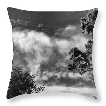 Summer's Leaving Throw Pillow