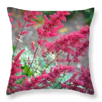 Summer's Offering Throw Pillow by Corinne Rhode