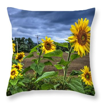Summers Over Throw Pillow