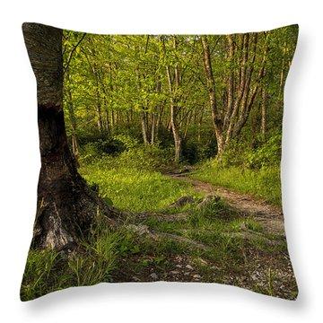 Price Lake Trail - Blue Ridge Parkway Throw Pillow