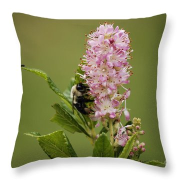 Summersweet Throw Pillow
