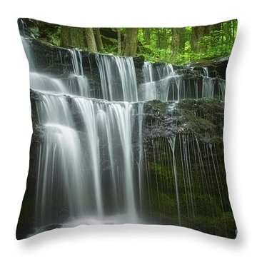 Summertime At Gunn Brook Falls Throw Pillow