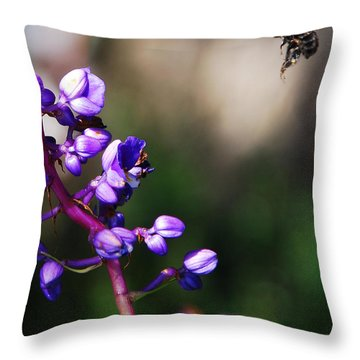 Throw Pillow featuring the photograph Summertime by Margaret Palmer