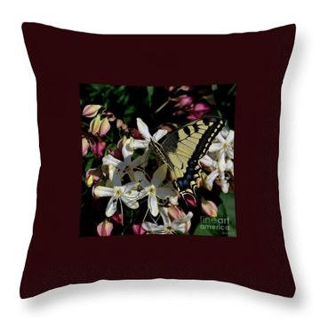 Throw Pillow featuring the photograph Summertime by Marija Djedovic
