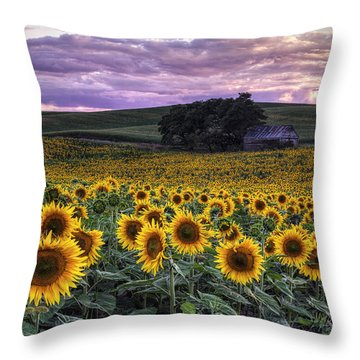 Summertime Sunflowers Throw Pillow