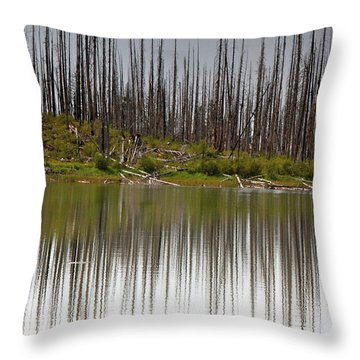 Summit Lake Throw Pillow