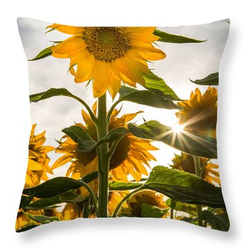 Sun And Sunflowers Throw Pillow