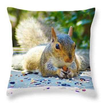 Sun Bathing Squirrel Throw Pillow