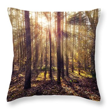 Sun Beams In The Autumn Forest Throw Pillow