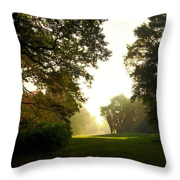 Sun Beams In The Distance Throw Pillow
