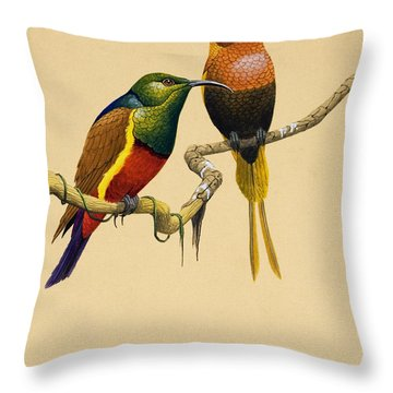 Sun Birds Throw Pillow by English School