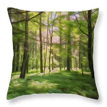 Throw Pillow featuring the photograph Sun Dappled Forest by John M Bailey