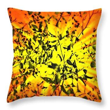 Sun Dappled Leaves Throw Pillow by Robin Regan