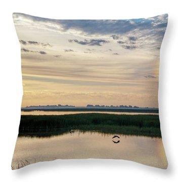 Sun Dog And Herons Throw Pillow