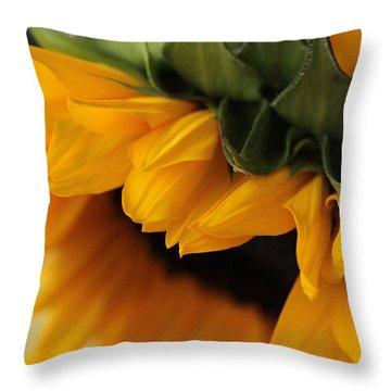 Sun Dozing  Throw Pillow